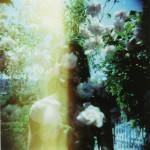 film_120_3-1