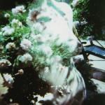 film_120_3