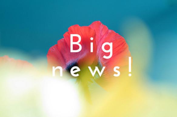 big news-poppy