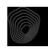 Main emblem